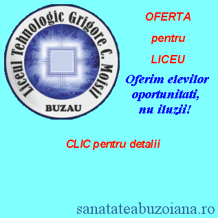 moisil_liceu1