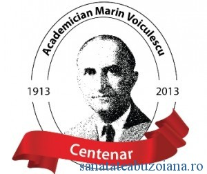 logo centenar voiculescu