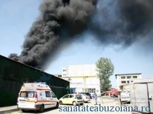 incendiuRomcarbon
