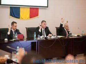 consiliu-31-mart-2013-(2)