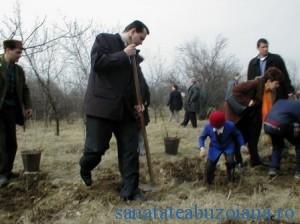 Boscodeala la plantat de pomi