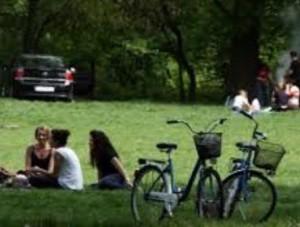 tineri la iarba verde