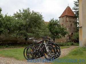 biciclete (2)
