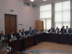 consiliul judetean (2)