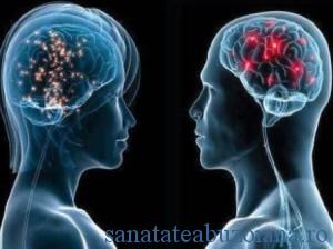 creier_femei_vs_barbati