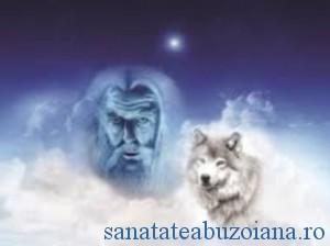 lupul alb, ocrotitorul dacilor