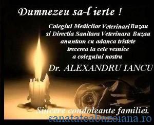 Ferpar dr. Iancu
