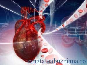 Colesterol-HDL