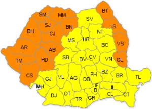 Cod portocaliu (2)