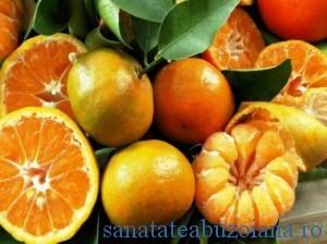 citrice portocale