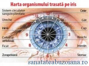 harta ochiului