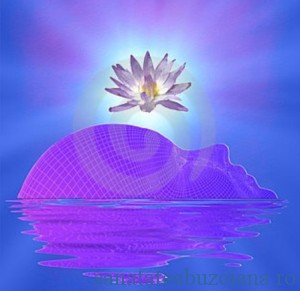 meditatie violet