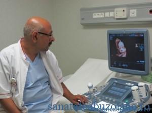 Dr. Haidi Rahimian
