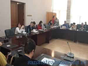 consiliul national al dizabilitatii (1)
