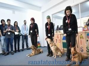 terapie cu caini  (1)