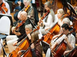 orchestra medici